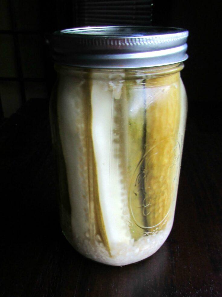 Jar of homemade refrigerator pickle spears.