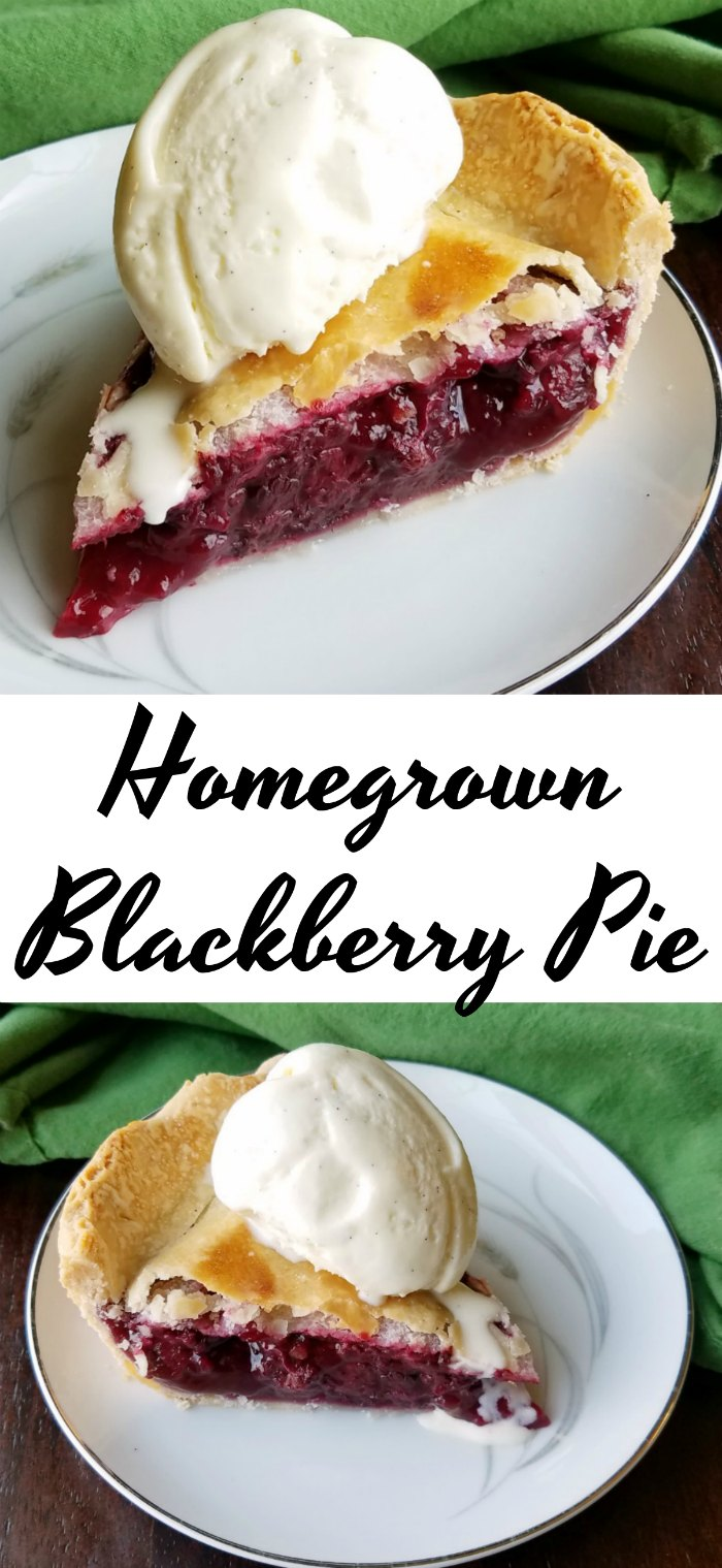 Blackberry pie is an annual tradition when our bushes start producing ripe fruit. Flaky crust hides that amazing filling that is the perfect combination of sweet fruit with just a hint of lemon.