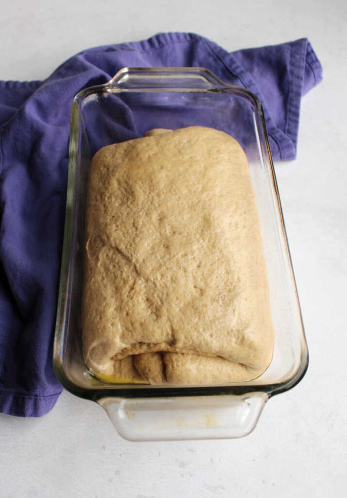 sourdough sandwich bread dough in loaf pan