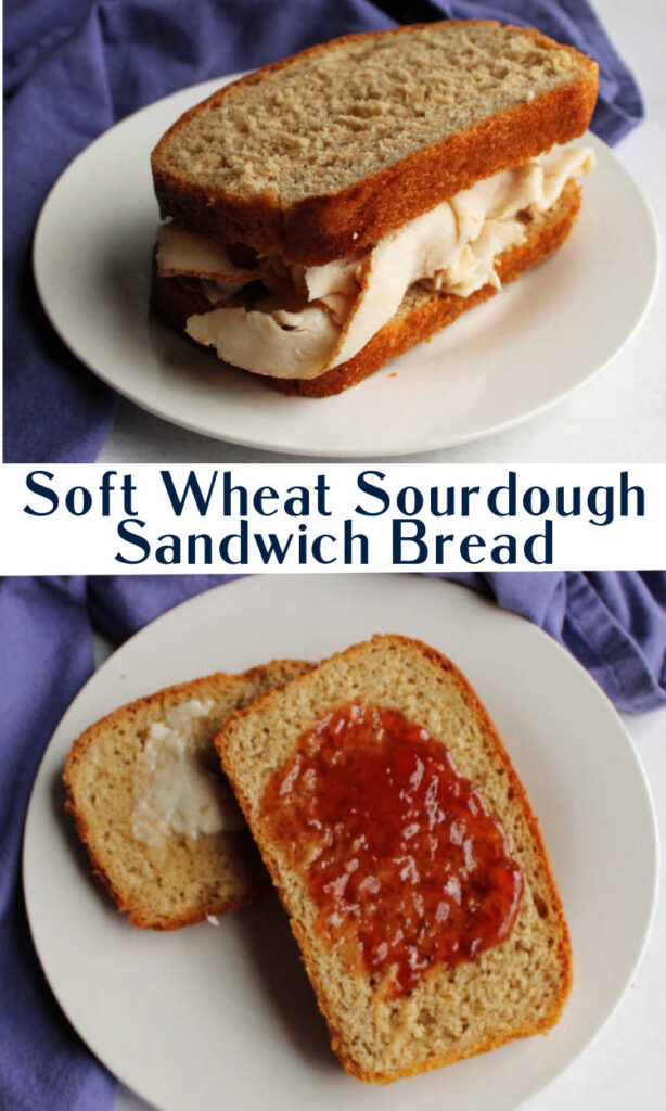 Make perfectly soft bread for sandwiches.  It is hearty, delicious and easy to make.  Your sourdough starter will love its new life making more bread.  You can serve slices with butter with dinner, toast some for breakfast or roll fun fillings inside.  The possibilities are endless!