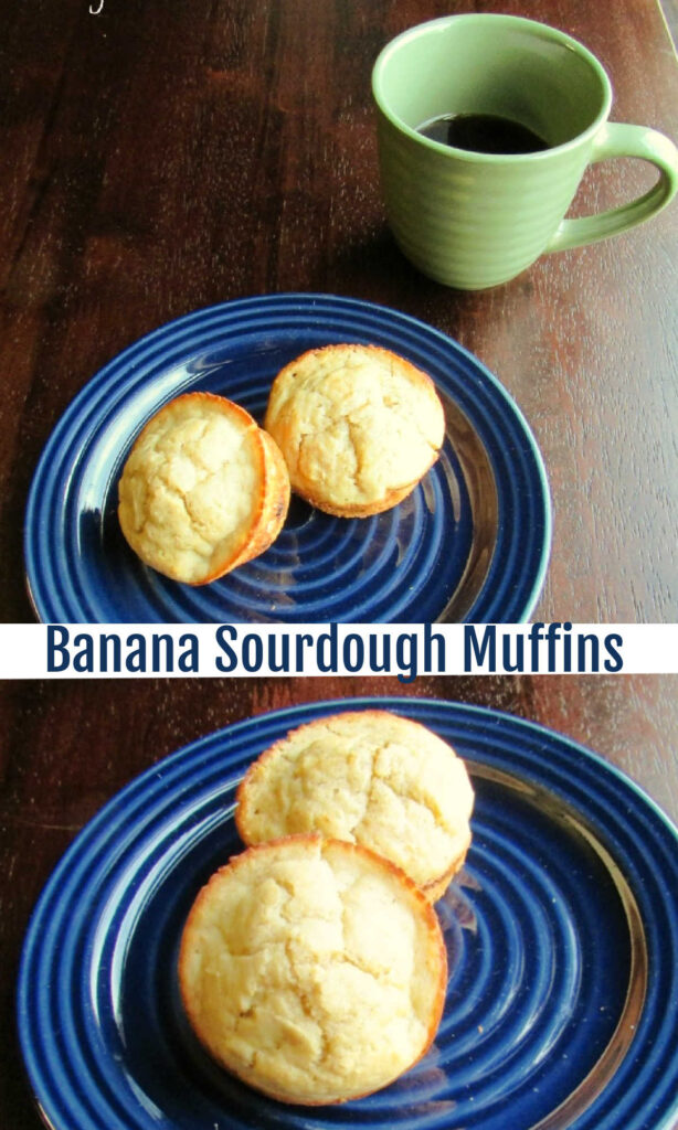 These banana muffins use sourdough discard to make tender and delicious muffins. They are a nutritious way to start your day.