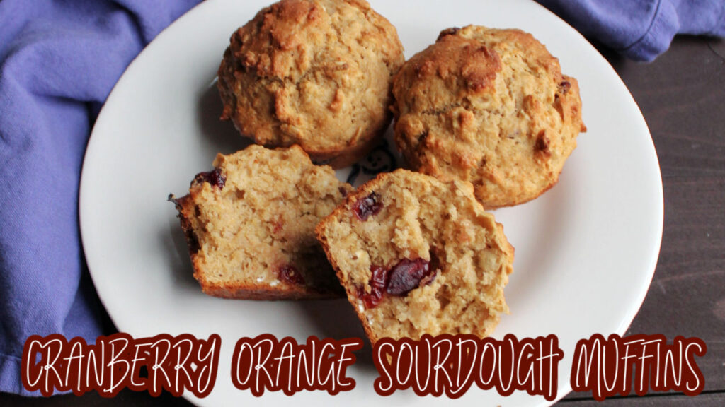 cranberry muffin youtube thumbnail