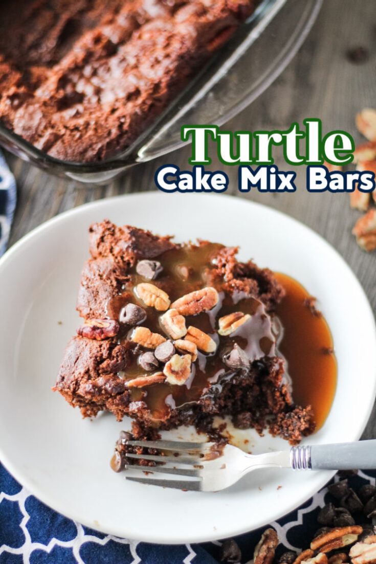 turtle cake mix bars