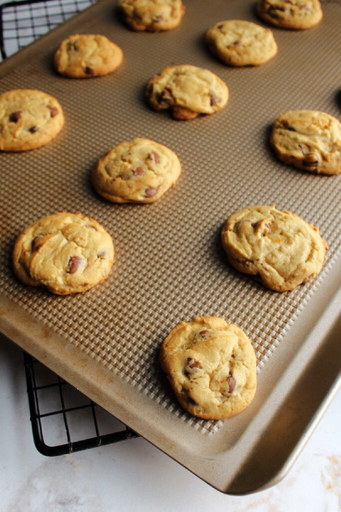 Cookie sheet filled with freshly baked chocolate chip cookies.