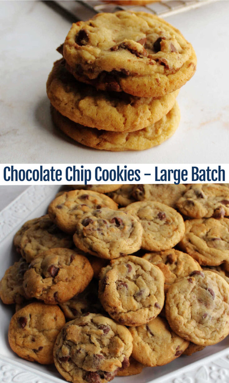 large batch chocolate chip cookies