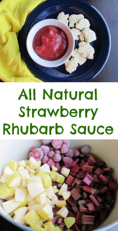 Strawberry2BRhubarb2BSauce2BPin