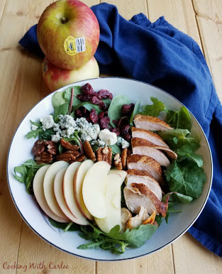 bowl with salad greens, apples, craisins, blue cheese, pecans and smoked chicken