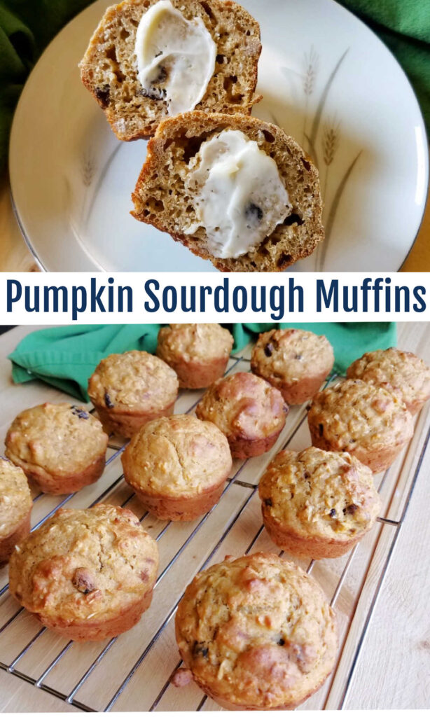 There is a ton of fall flavor packed into the muffins. Apples, pumpkin and cranberries join forces with sourdough to bring you surprisingly healthy but still deliciously tender muffins.