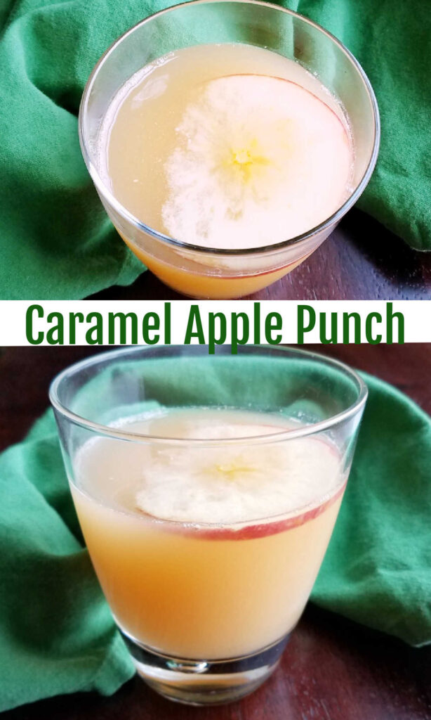 If you are throwing a fall get together, this really simple punch is a must.  You can throw it together in just a few minutes, it tastes like a million bucks and the leftovers keep well too.  It is a perfect way to quench your thirst and delight your guests as well.