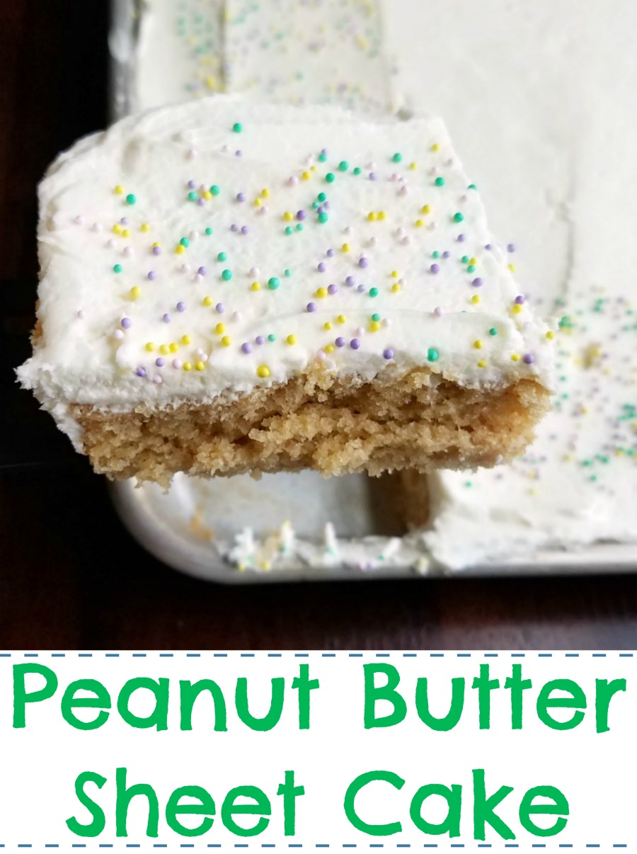 This easy and peanut buttery cake is perfect for feeding a crowd.  It is made much like a Texas sheet cake and would be good with that chocolate icing, but we love it with white chocolate buttercream for an extra special treat!