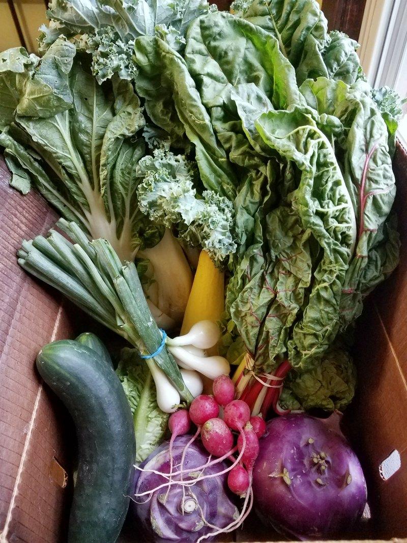 box of fresh veggies from CSA