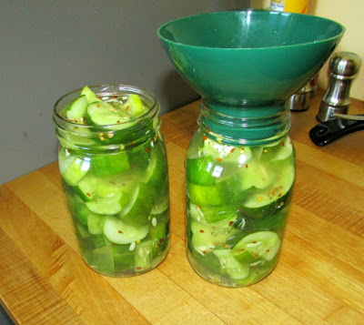 quart jars filled with freshly made quick pickles