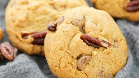 close2Bturtle2Bcookies