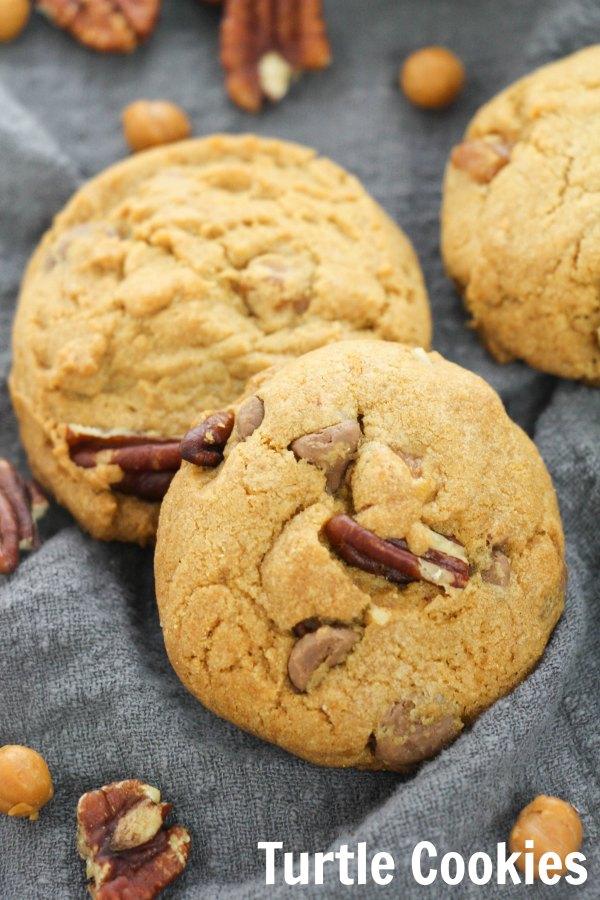 turtle2Bcookies