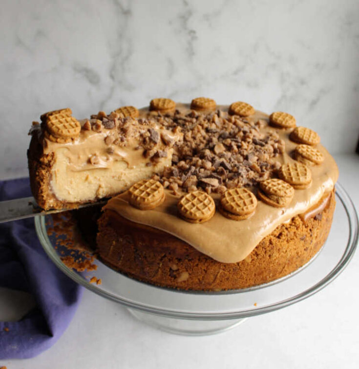 lifting first slice out of peanut butter toffee cheesecake