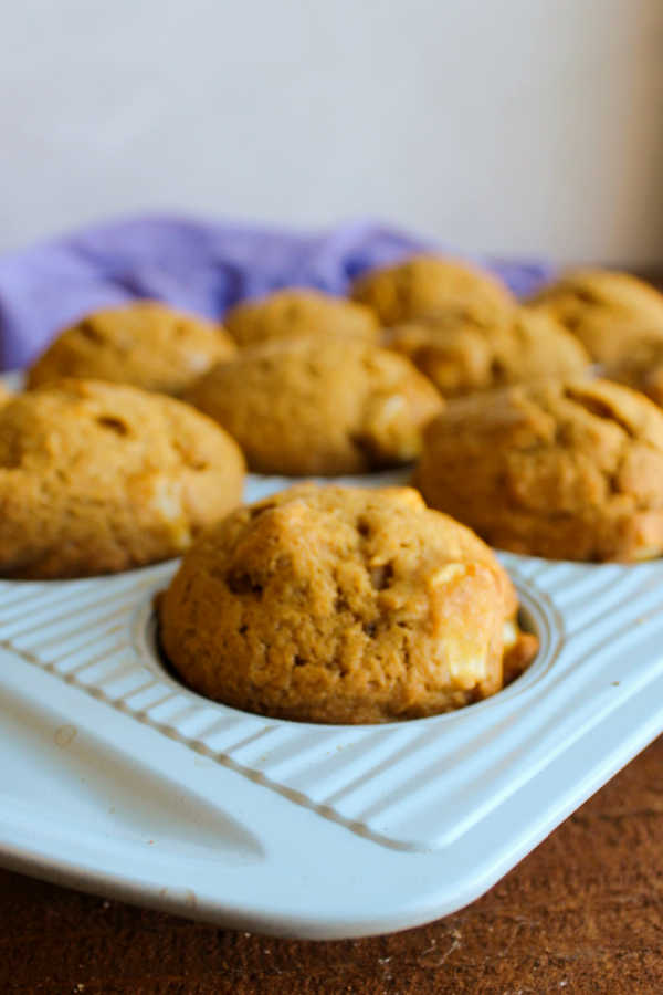 pumpkin muffins in cupcake tin fresh from oven.