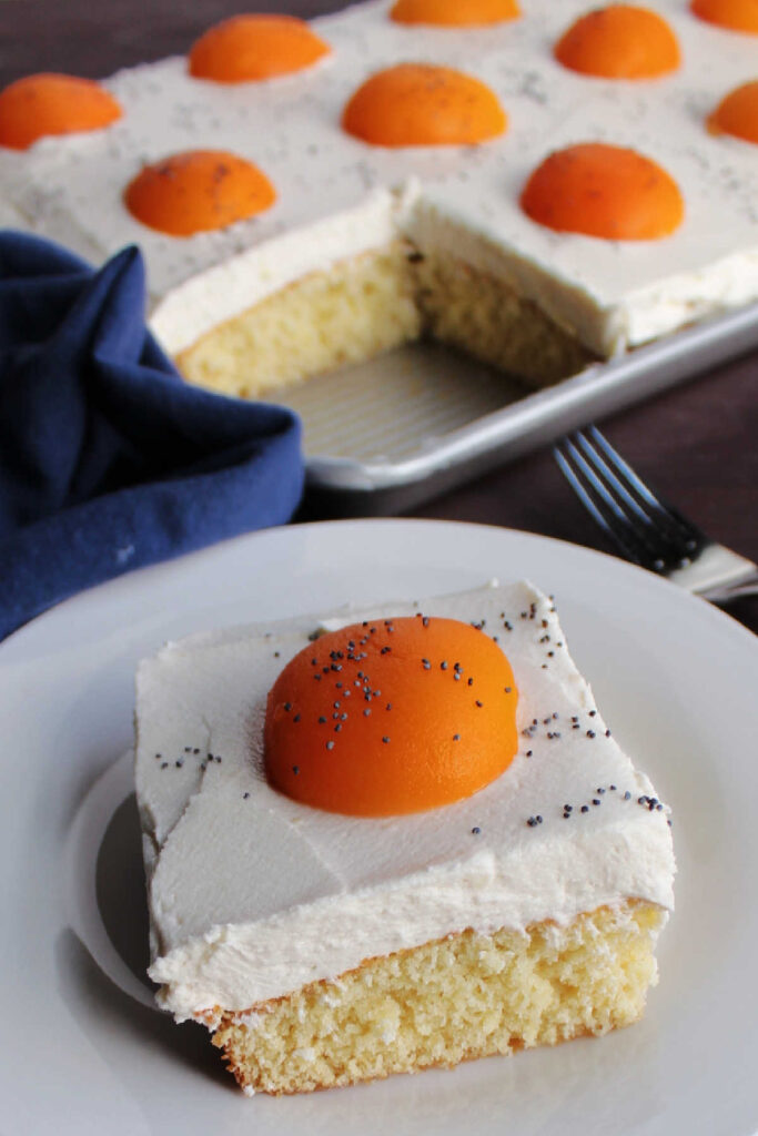 Piece of fried egg cake with poppy seed black pepper on top ready to eat.