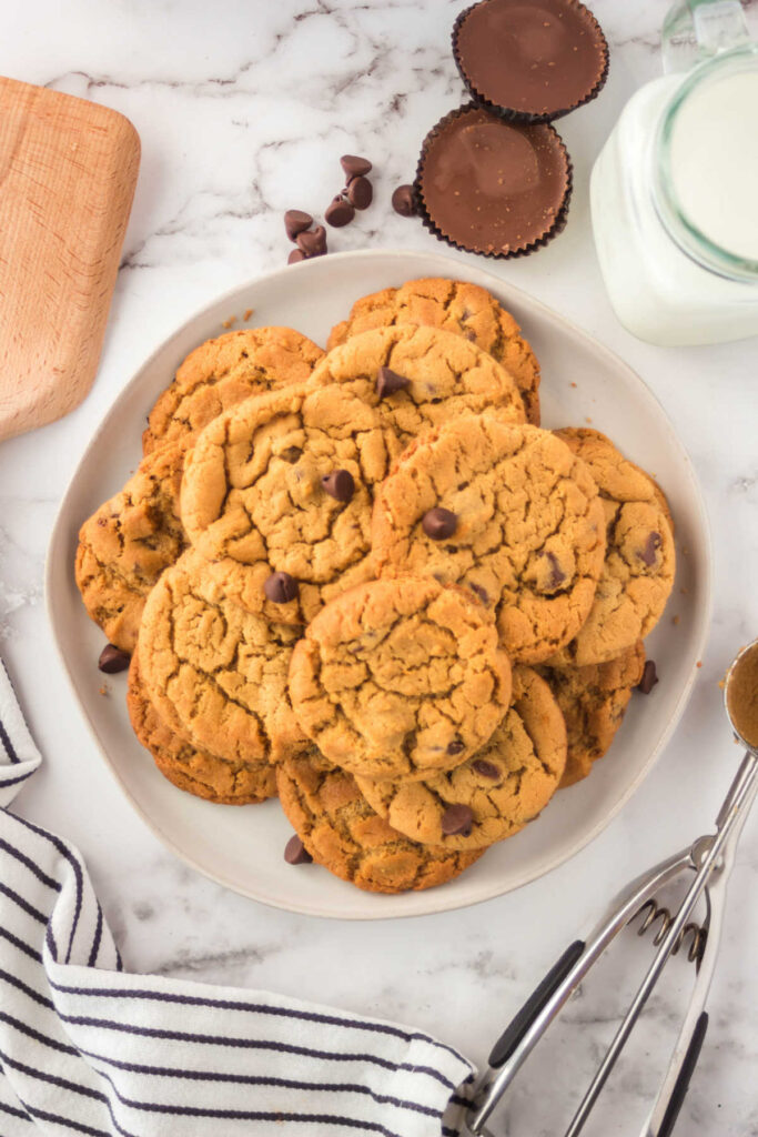 Looking down on plate of peanut butter chocolate chip cookies and milk.