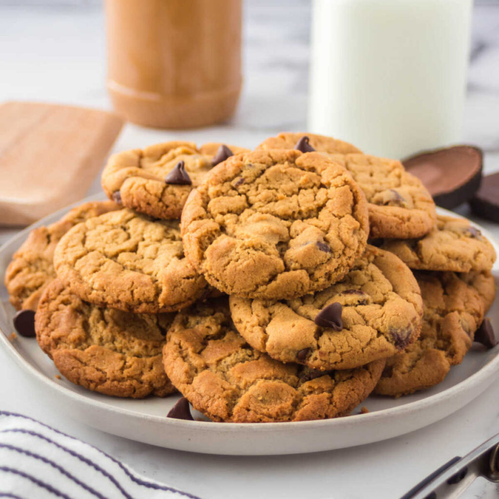 Plate of chewy peanut butter chocolate chip cookies ready to eat.