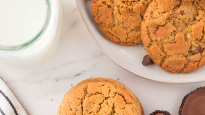 plate of peanut butter chocolate chip cookies