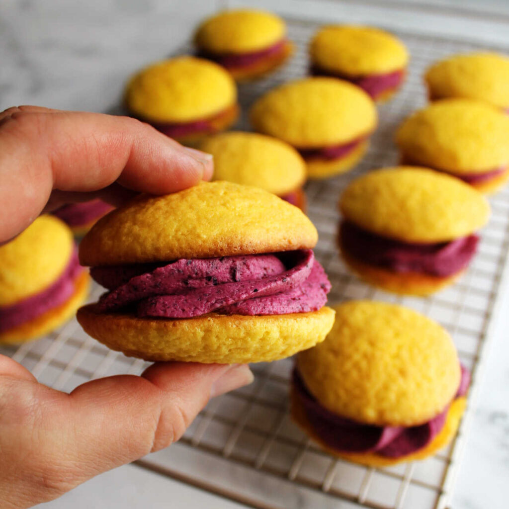 Hand holding lemon whoopie pie with rounded cakelike cookies sandwiched around blueberry filling.