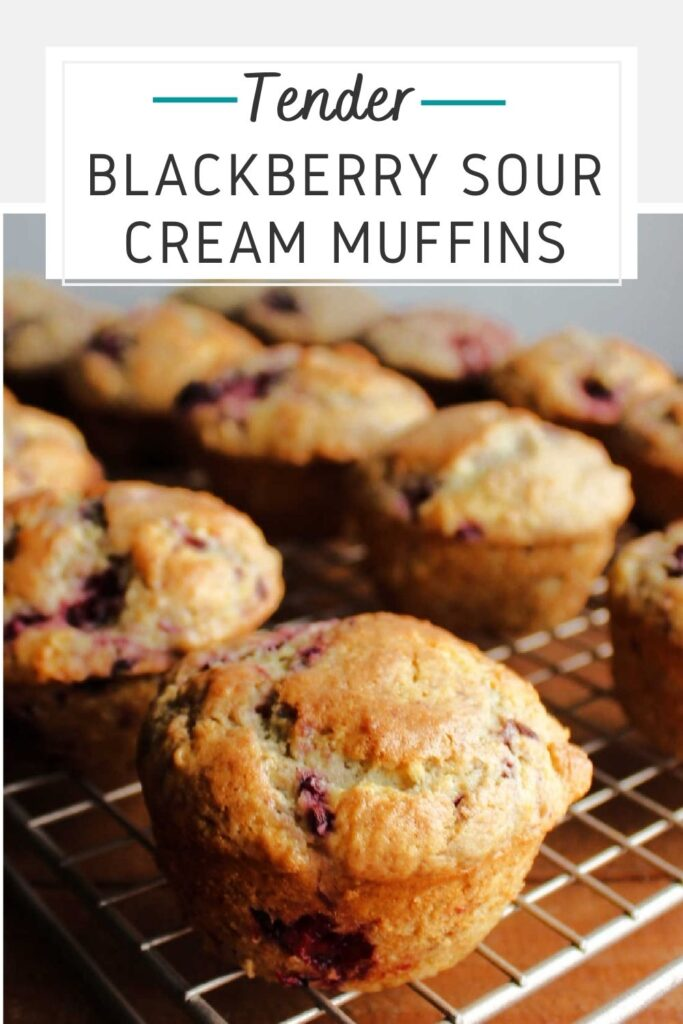 Tender blackberry sour cream muffins are the perfect mix of fresh fruit and sweet baked good. They are pretty, easy to whip up and perfect for a grab and go breakfast.