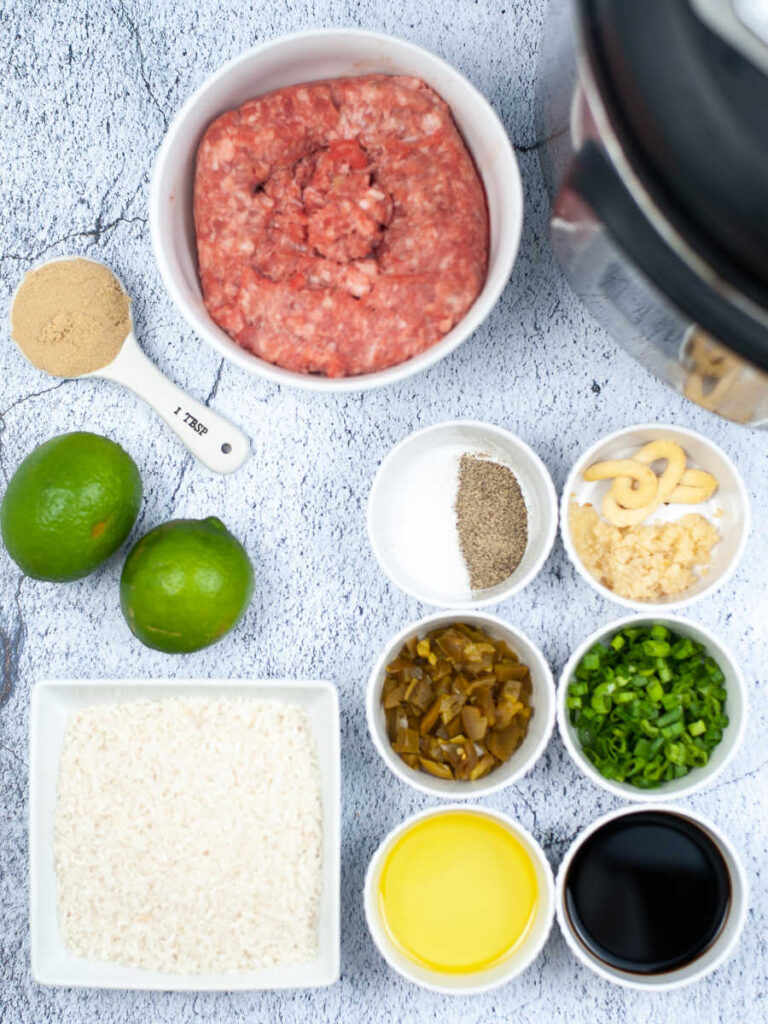 Ingredients ready to be made into caramel pork.