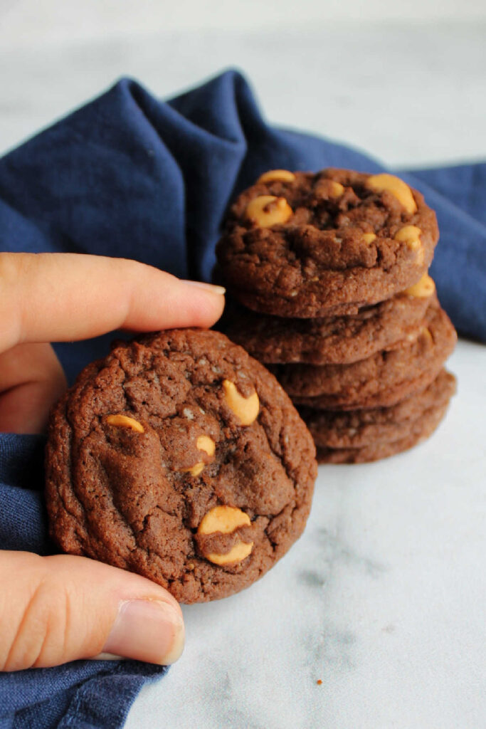 Hand holding soft chocolate cookie with peanut butter chips.